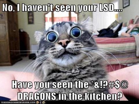 LSDcat